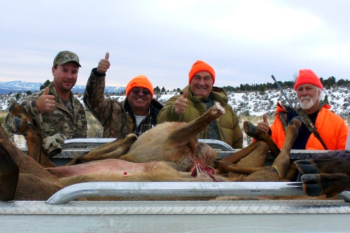 Group Cow Elk Hunt