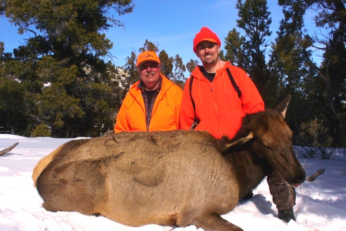 Utah Cow Elk Guides