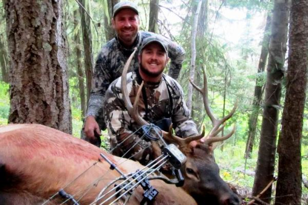 Archery Elk Hunting Guides