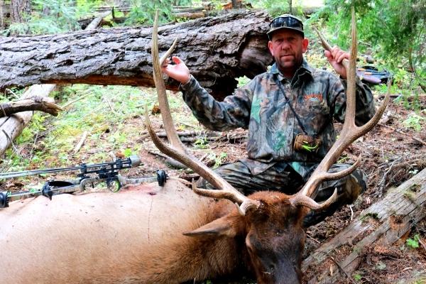 Photo Bill's Archery 6x6 Bull Elk