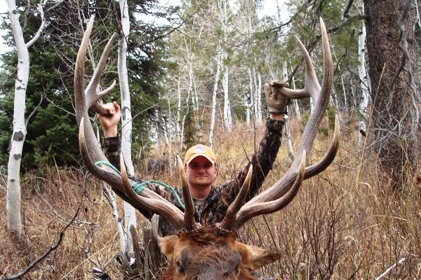 Photo Of 6x7 Idaho Bull Elk