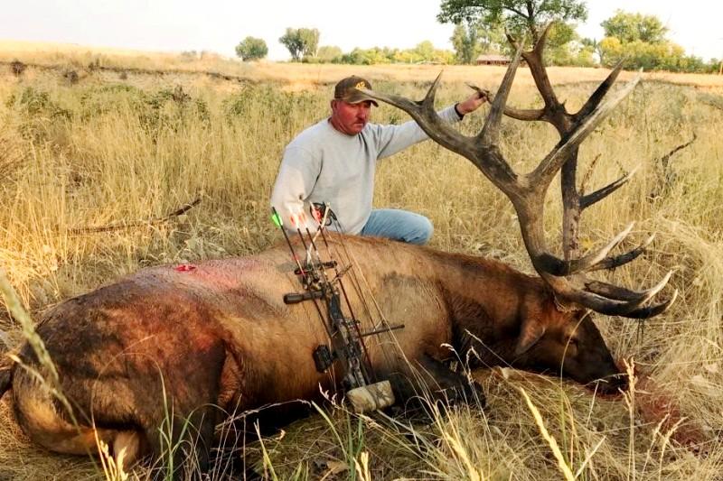 Montana Trophy Bull Elk